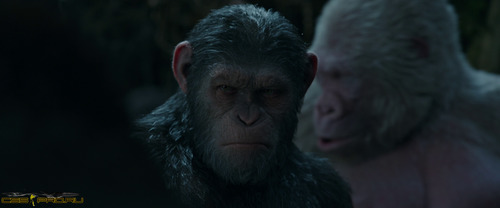 Планета обезьян: Война / War for the Planet of the Apes (2017) BDRip 1080p от ExKinoRay | D, L1 | iTunes - 4